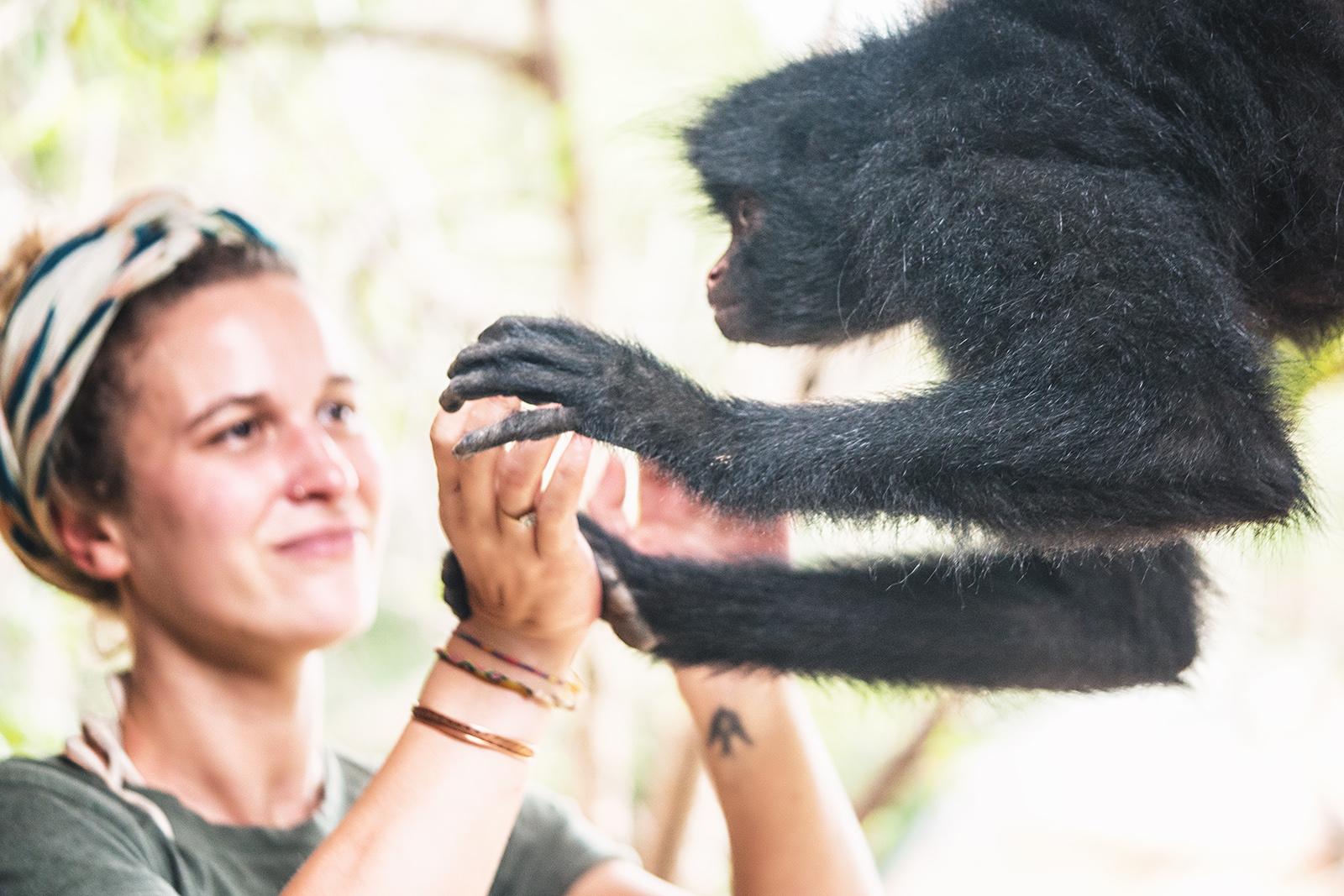 El cariño que brindas es devuelto por los animales